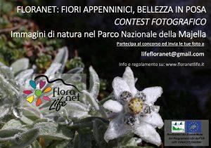 Contest Fotografico FLORANET: FIORI APPENNINICI, BELLEZZA IN POSA