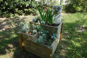 Piccoli giardini botanici nelle scuole per la conservazione delle piante Floranet