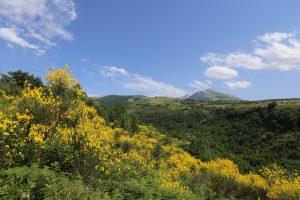 Volontari per Floranet nel Parco Nazionale della Majella