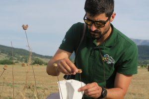 Raccolta semi da parte dei tecnici Floranet