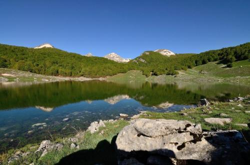 Giordano Simone - Faggete vetuste - Lago Vivo